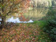 BeFree Tantraseminar im Herbst